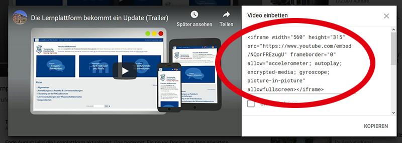 Screenshot vom Embed-Code